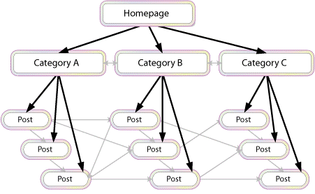 A network of linked web pages