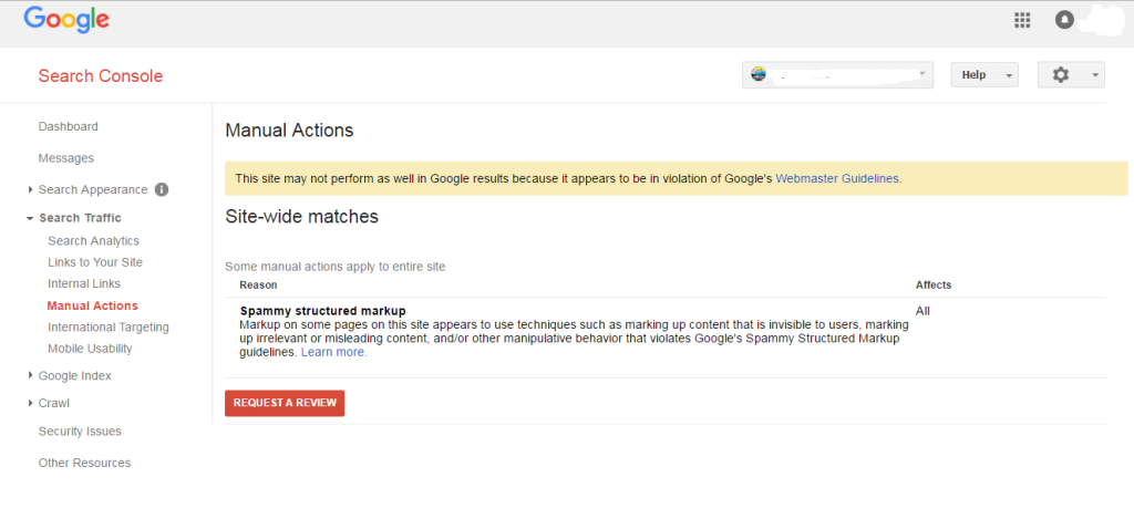 Webmaster with a schema markup manual action penalty
